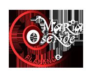 MARIA OSENDE FLAMENCO