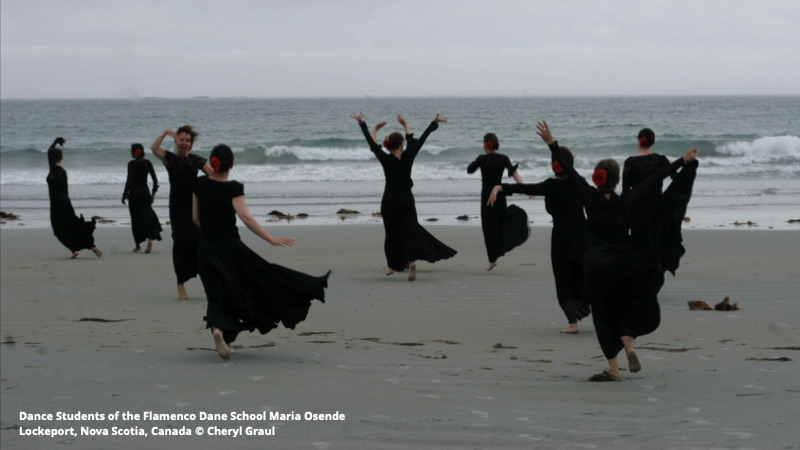 AF Summer Newsletter – Flamenco and Tomatoes!