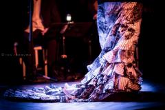 r2_2016-11-04_flamenco-15_30726147912_o
